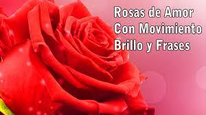 imagenes chidas brillosas imágenes de rosas de amor con movimiento rosas de amor con brillo y