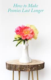 how to make peonies last longer the crafted life