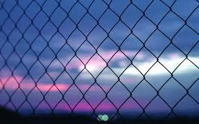 fence background wallpaper crowdbuild for