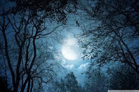 magical night wallpapers full moon night 4k hd desktop wallpaper for u2022 dual monitor
