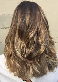 layered highlighted hair styles 22 best hairstyles for thick hair sleek frizz free