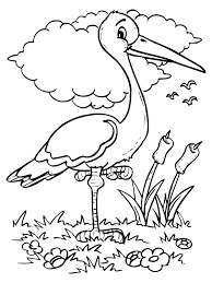 coloring pages birds gallery coloring 2985 unknown