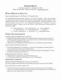 executive summary resume exles 21 fresh gallery of executive summary resume template cover