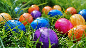 kids easter eggs easter egg hunts animal experiences and more events for