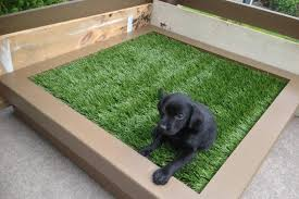 dog home decor view patio potty for dogs home decor color trends cool with patio