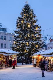 the christmas market of tallinn u0027s old town u2013 the bizarre globe hopper