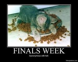 College Finals Meme - college finals week internet memes juxtapost