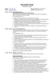 Sample Ceo Resume by Template Template Profile For Resume Sample Prepossessing Personal