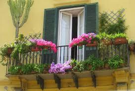 forest balcony garden flowers lovely pink plants green cute