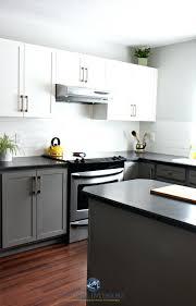 martha stewart kitchen cabinet cabinet laminate sheets home depot painting kitchen cabinets