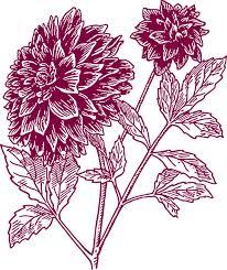 carnation flower tattoo designs free download clip art free