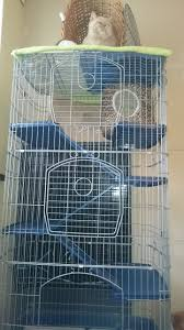 Large Ferret Cage 4 Tier Ferret Cage Also Ideal Chincilla Etc Hayling Island