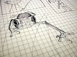 file the pen sketch of a frog jpg wikimedia commons