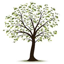 trunk clipart family tree pencil and in color trunk clipart