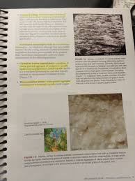 laboratory manual in physical geology fourth edition for texas