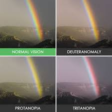 How Do Blind People See Take A Look At The World The Way Colorblind People See It 40 Pics