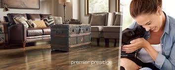 Premier Glueless Laminate Flooring Laminate Floor Premier Prestige