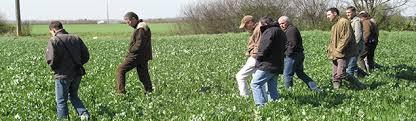 chambre d agriculture d auvergne actions recherche et développement des chambres d agriculture d