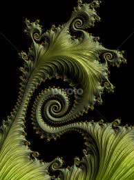 fractal pattern in nature spiral fern fractal abstract patterns illustration pixoto