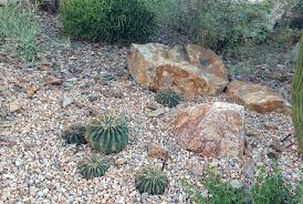 hermann design group drought tolerant landscaping hermann design