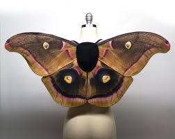 Halloween Costume Fairy Wings Polyphemus Moth Fairy Wings Moth Costume Handmade Halloween
