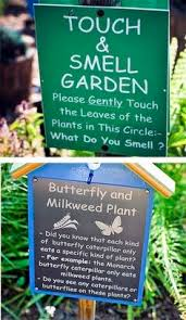 how to design a sensory garden for the blind or visually impaired