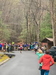 the white whale of tennessee john kelly u0027s 2017 barkley marathons