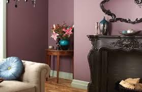 purples paint wickes co uk