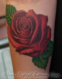 roed rose on forearm by rafael marte tattoos