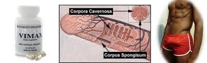 obat pembesar penis paten no 1 vimax asli di cirebon