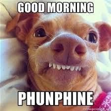 Good Morning Sunshine Meme - good morning sunshine loughrea youth project facebook