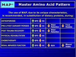 purium master amino acid pattern map master amino acid pattern presentation part 2