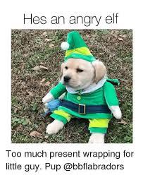 Angry Elf Meme - th id oip mgpkeqzfjdiajqhn bvpjad1es