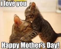 Mothers Day Meme - happy mothers day i love you pictures photos and images for