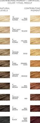clairol professional flare hair color chart best 25 clairol hair color ideas on pinterest garnier hair dye