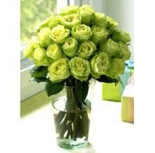 green roses green roses