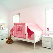 Bunk Bed Canopy Tent Top Bunk Bed Canopy Ideas Princess Beds With Slides For Children