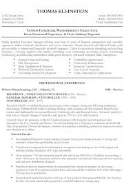 Financial Resume Example by Executive Officer Resume Example