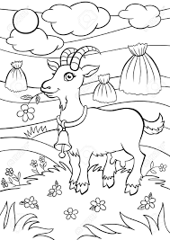 coloring pages animals little cute goat stands on the field