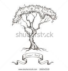 trees vectors free vector stock