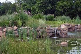 Natural Swimming Pool Natural Swimming Pool U2014 Jonathan Alderson Landscape Architects