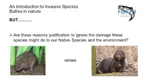 invasive non native plants an introduction to invasive non native species bullies in nature