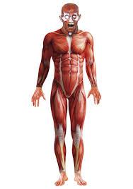 Bodybuilder Halloween Costumes Anatomy Man Costume
