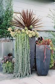 flower pot sale succulent container gardens for sale home outdoor decoration