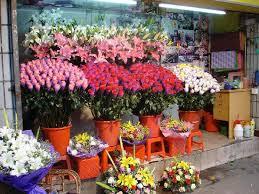local flower shops local flower shop picture of guangzhou guangdong tripadvisor