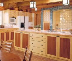 mix and match kitchen cabinet doors mix and match mail order cabinets homebuilding