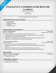 Activities Coordinator Resume Insurance Coordinator Sample Resumecompanion Com Resume