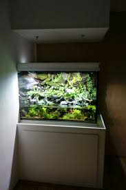 63 best aquariums images on pinterest aquarium ideas aquarium