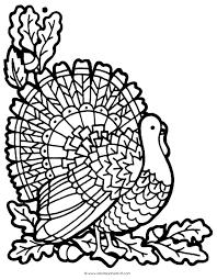 turkey color page akma me