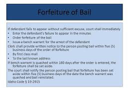 Bench Warrant Procedures Right To Bail Idaho Constitution Article I Section 6 Right To